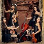 Violin Group Dolls - Официальный сайт агента