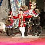 Дрессированный медведь Потап - Официальный сайт агента