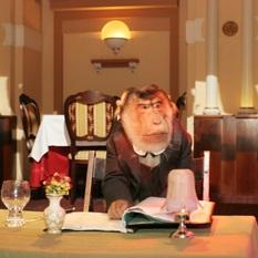 Мистер Вато, обезьянка - Официальный сайт агента